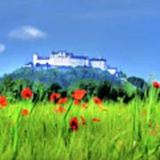 Salzburg Poppies Art Print