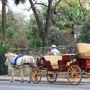 San Antonio Carriage Art Print