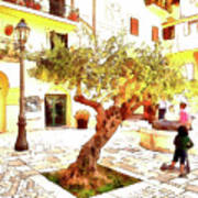 San Felice Circeo Olive Tree In The Square Art Print
