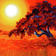 San Mateo Oak In Bright Sunset Art Print