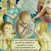 Sanctity Of Life Art Print