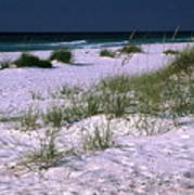 Sand Beach And Grass Art Print