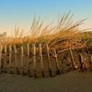 Sand Dune In Late September - Jersey Shore Art Print
