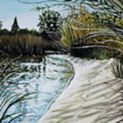 Sandy Reeds Art Print