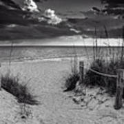 Sanibel Island Beach Access In Black And White Art Print