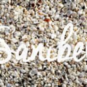 Sanibel Island Seashells Art Print