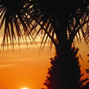 Sanibel Island Sunrise Art Print