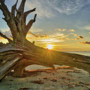 Sanibel Sunrise Art Print