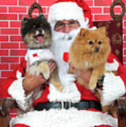 Santa Paws With Two Dogs Art Print