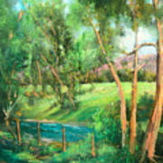 Santa Rosa Creek Art Print