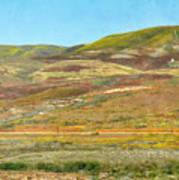 Santa Ynez Mountains Wildflowers Art Print