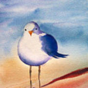 Sassy Seagull Art Print