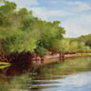 Satilla River Art Print
