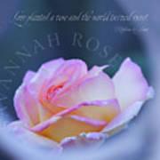 Savannah Rose 3 Art Print