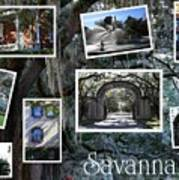 Savannah Scenes Collage Art Print