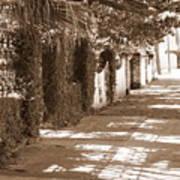Savannah Sepia - Sunny Sidewalk Art Print