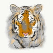 Save The Tiger Art Print