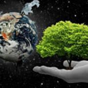 Save Tree Art Print