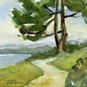 Saxe Point Tree Art Print