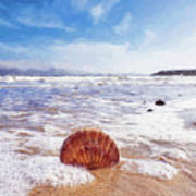 Scallop Shell On The Beach - Impressions Art Print