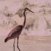 Scanning The Surf Art Print