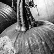 Scary Stem Pumpkin Art Print