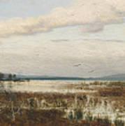 Scene Of Chiemsee, Moor Landscape Art Print