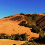 Scenic California Art Print