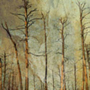 Scorched Forest Art Print