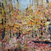 Scotts Run Nature Preserve 201803 Art Print
