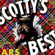 Scotty's Best Washington State Pears Art Print