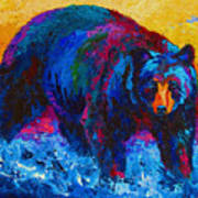 Scouting For Fish - Black Bear Print by Marion Rose