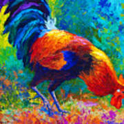 Scratchin' Rooster Art Print
