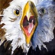 Screaming Eagle 2004 Art Print