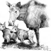 Scruffy Moose Family Art Print