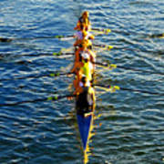 Sculling Women Art Print