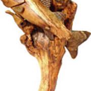 Sea Bass Sculpture Art Print