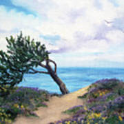 Sea Coast At Half Moon Bay Art Print
