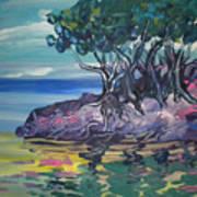 Sea Grapes By Lois Art Print