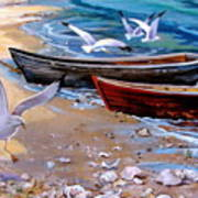 Sea Gull Cove Art Print