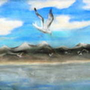Sea Gulls Art Print