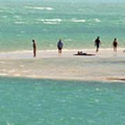 Sea Life Salt Life Key West Style  Art Print
