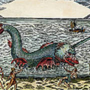 Sea Monster, 16th Century Art Print