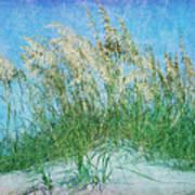 Sea Oats Two Art Print