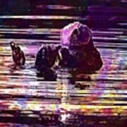 Sea Otter Swimming Floating Water  Art Print