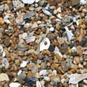 Sea Rocks Art Print