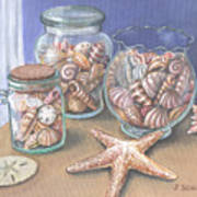 Sea Shell Collection Art Print