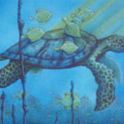 Sea Turtle And Fish Art Print