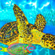 Sea Turtle And Parrotfish Art Print