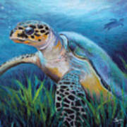 Sea Turtle Cove Art Print